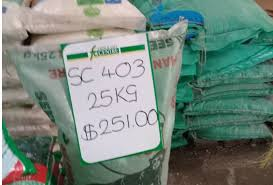 Command agriculture: The looting frenzy continues